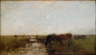 Vacas junto a un riachuelo